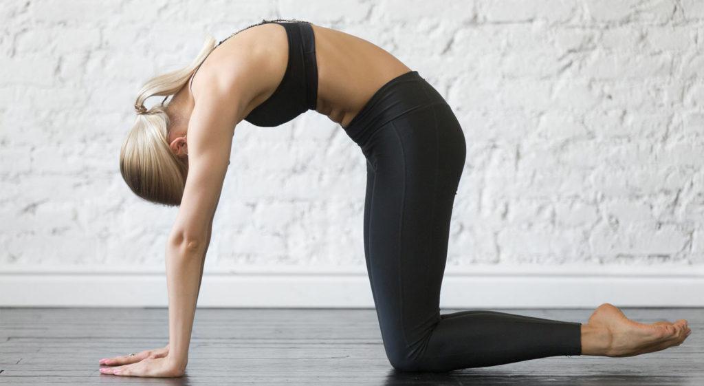 Femme faisant du yoga dans la position du chat dos rond